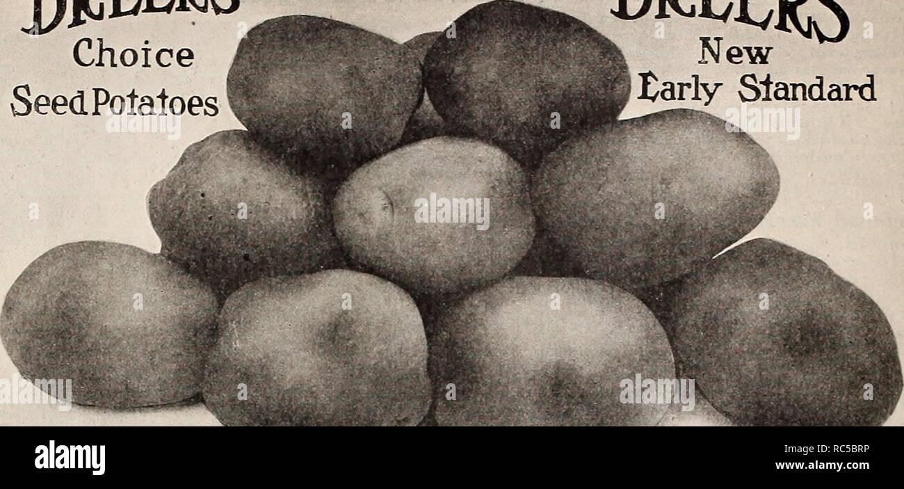 Dreer's market gardeners' wholesale price list : vegetable seeds