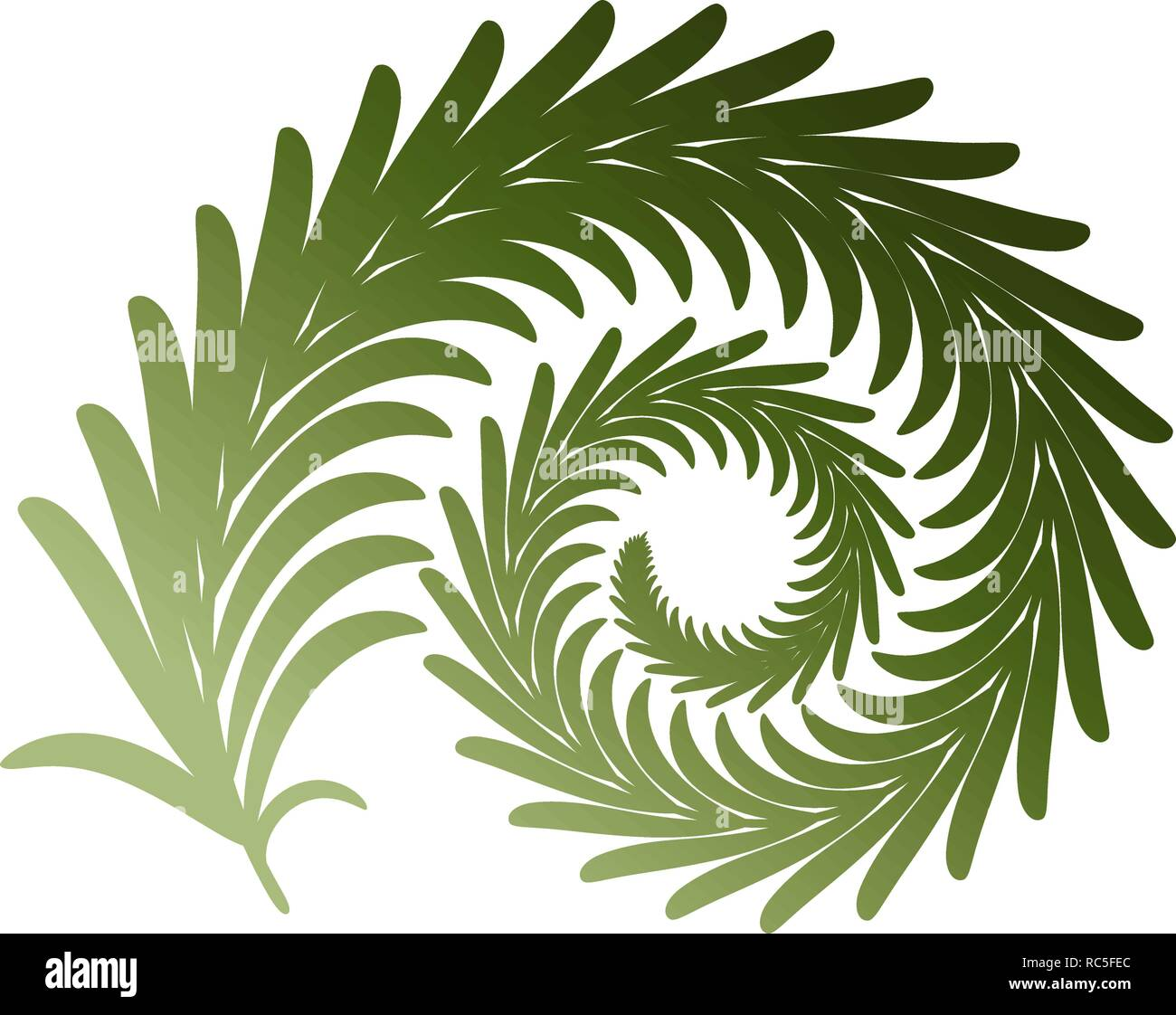 Twig fern curl. Vector image isolated on white. Eps 10 - Stock Vector
