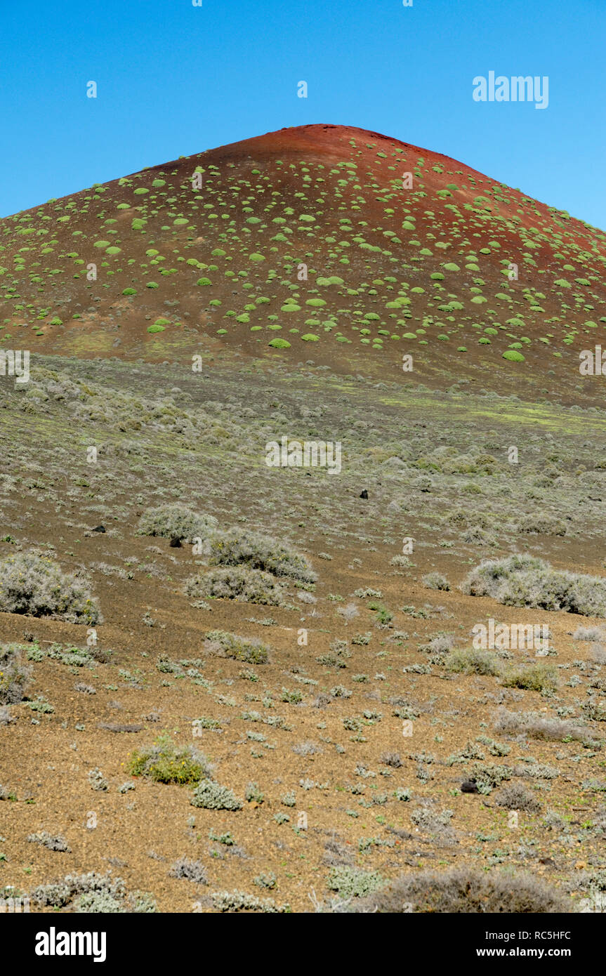 Volcanic hill covered in vegitation, near El golfo, Canary Islands, Spain. - Stock Image
