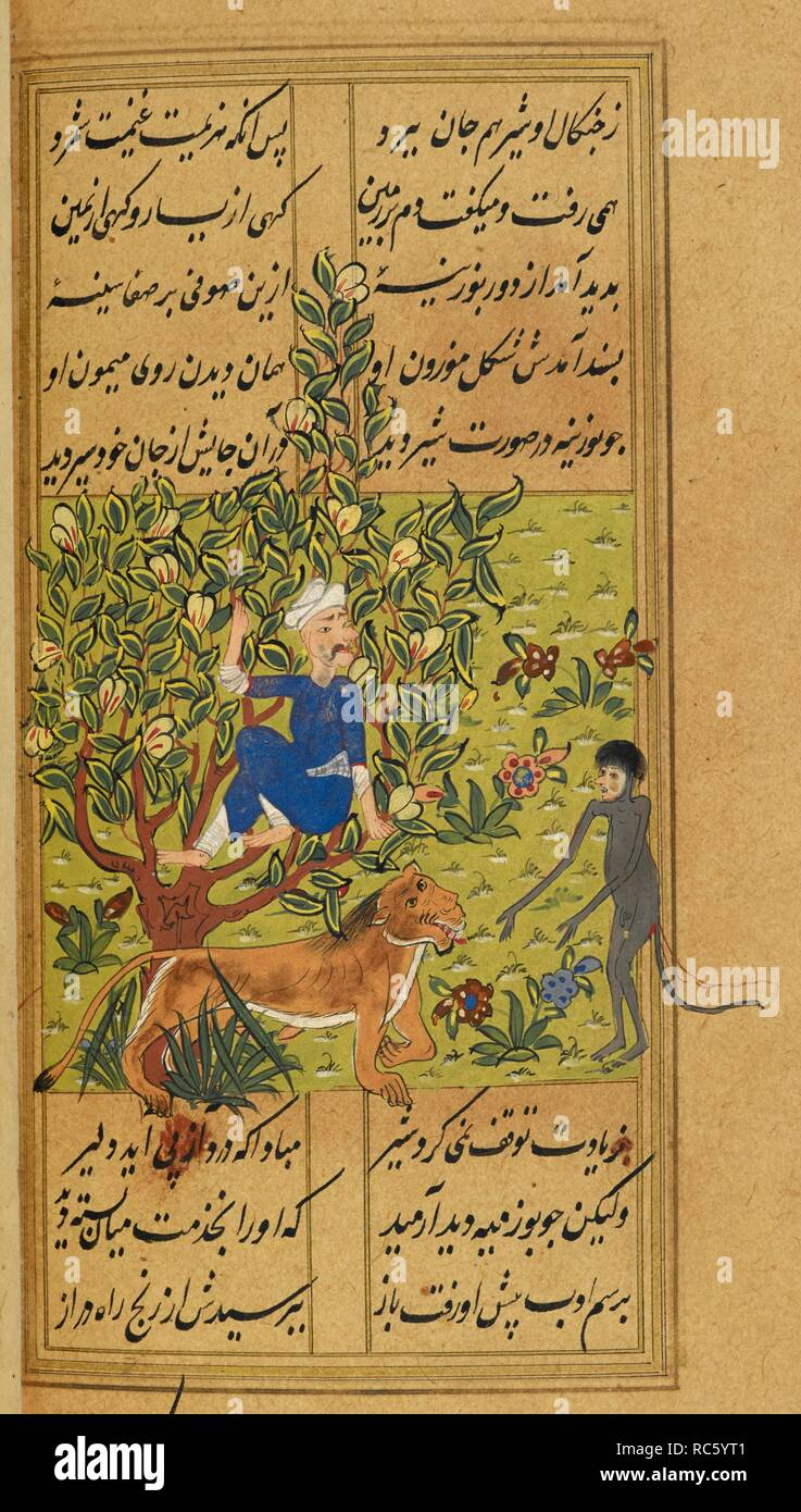 Sal'uk up a tree while a monkey below reproaches the lion