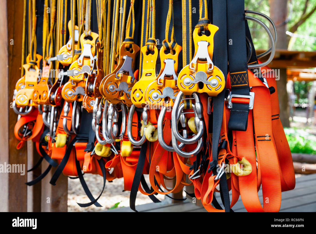 Close-up shot of safety harness self belay equipment at ropes course in outdoor treetop adventure park - Stock Image