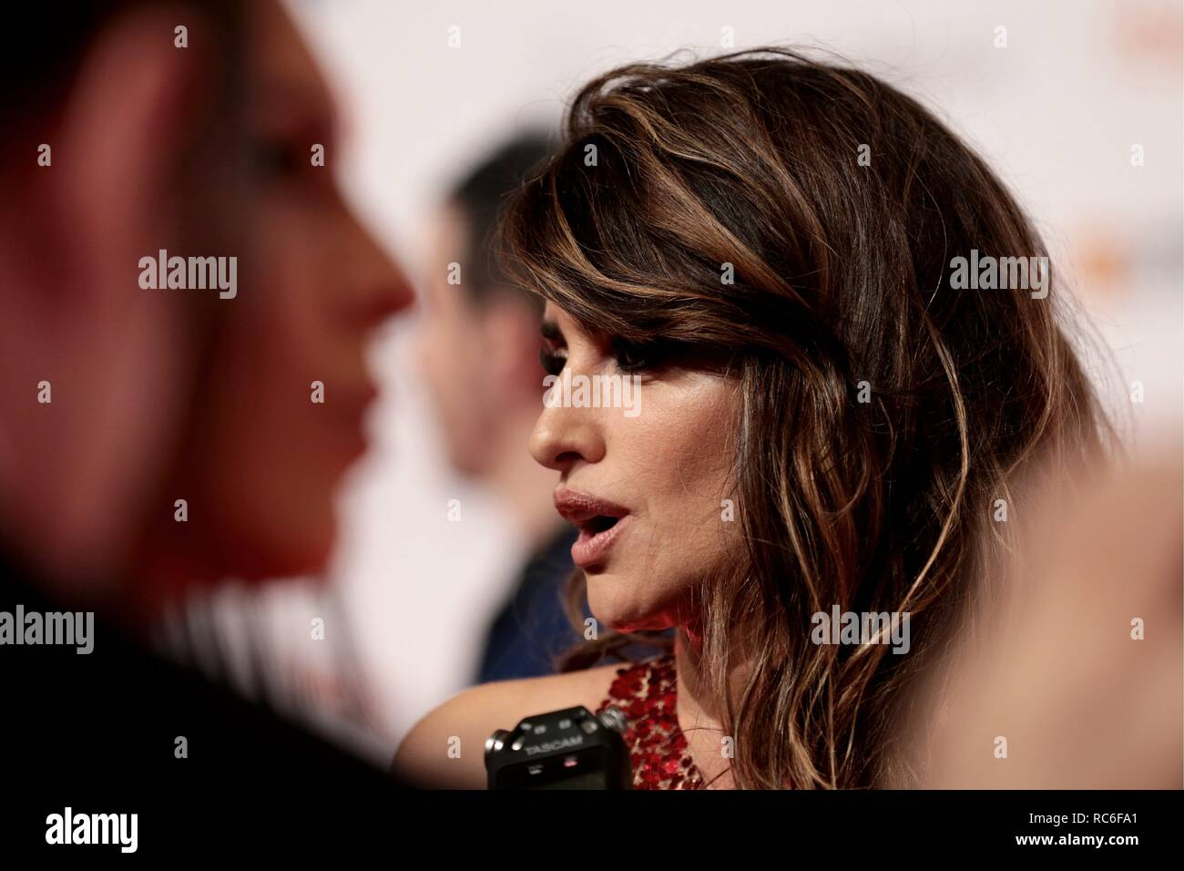 Zaragoza, Spain  12th Jan, 2019  Penelope Cruz Forque Awards of