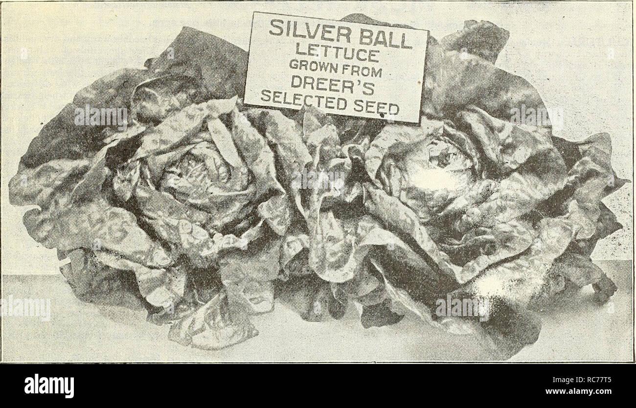 Dreer S Garden Calendar 1903 Seeds Catalogs Nursery Stock