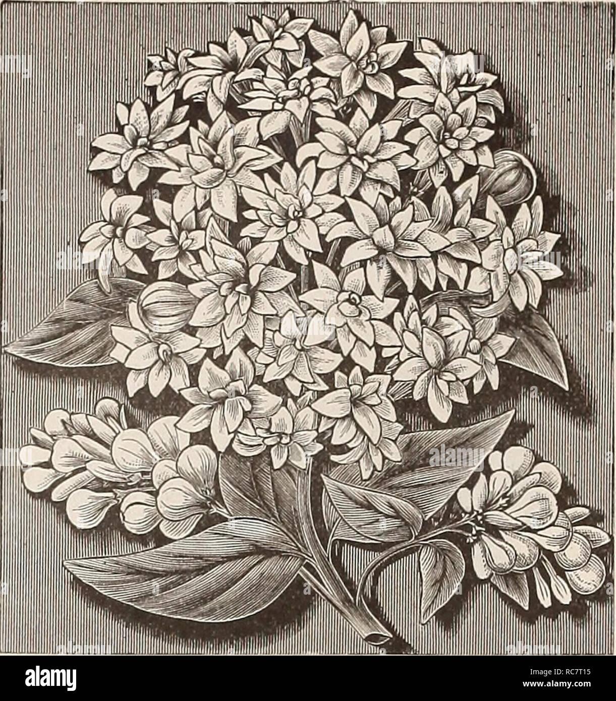 Dreer's garden calendar for 1892 : a catalogue of choice