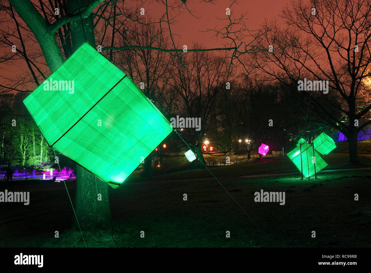 Artistic light installation in Gruga Park, park lighting, art action, Essen, North Rhine-Westphalia - Stock Image