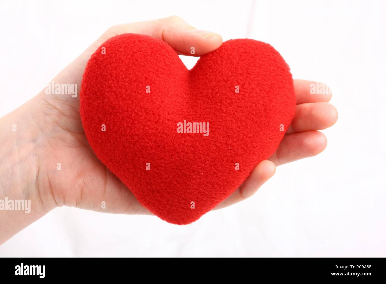 Hand holding a red heart, symbolic image for heart disease, heart attack, a diseased heart, cardiology - Stock Image