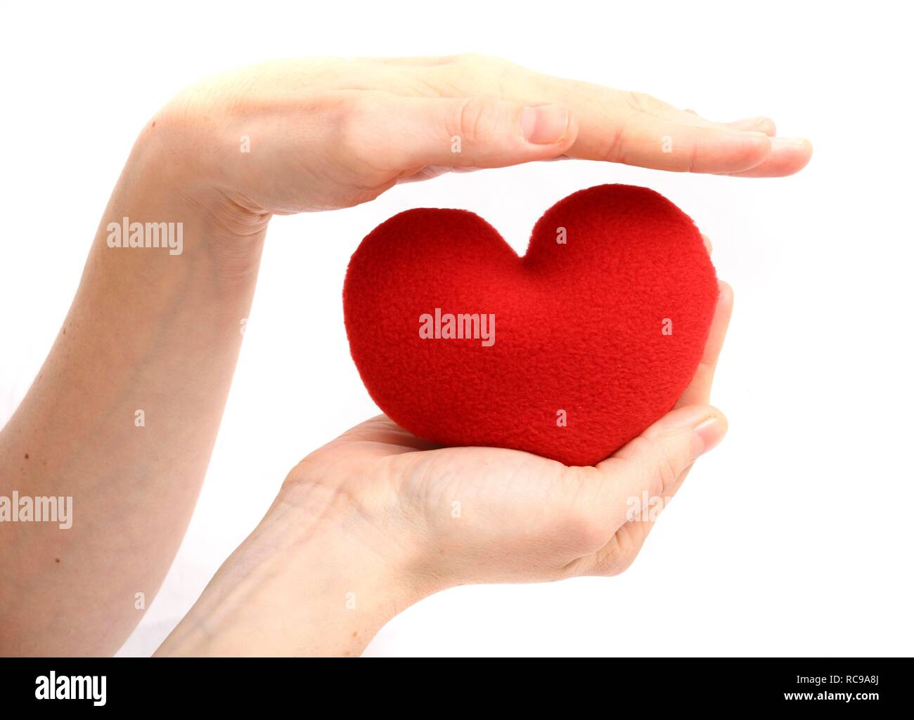 Hand being held protectively above a red heart, symbolic image for heart disease, heart attack, a diseased heart, cardiology - Stock Image