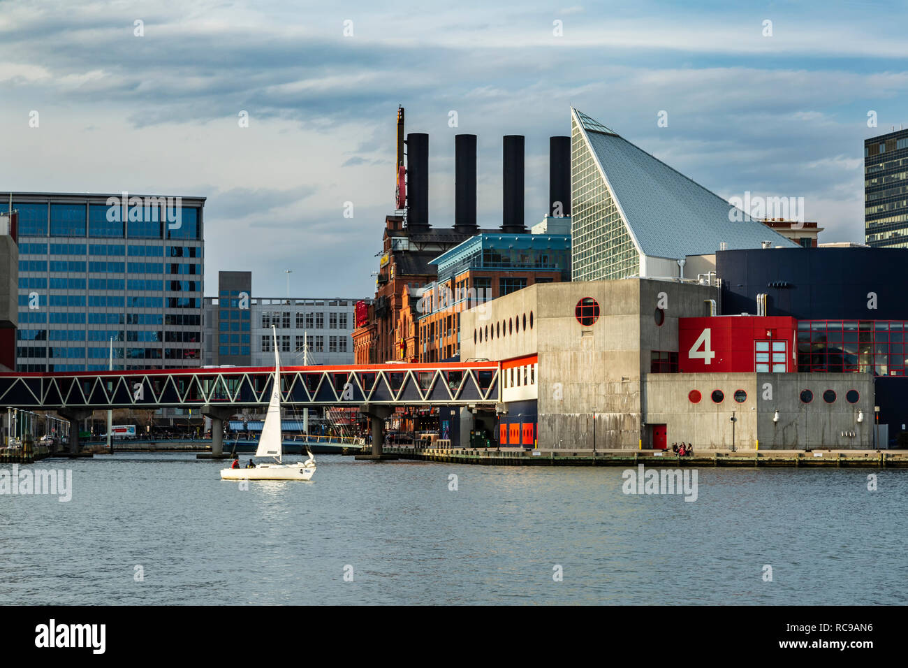Sailboat and Marine Mammal Pavilion, National Aquarium, Inner Harbor, Patapsco River, Baltimore, Maryland USA - Stock Image