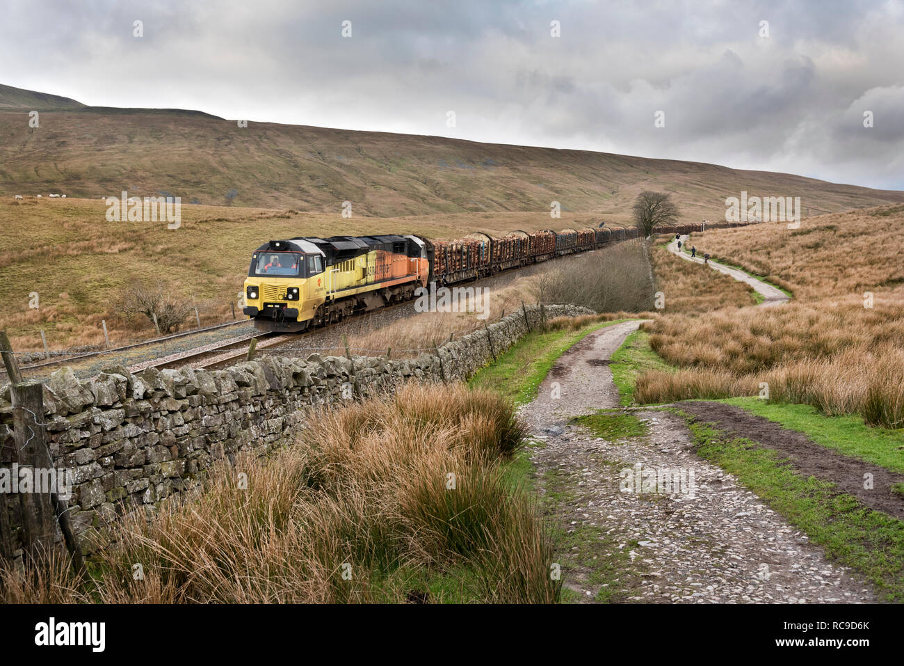 Class 70 freight locomotive hauls a log train south at Ribblehead, North Yorkshire en route to the Kronospan processing works at Chirk in North Wales Stock Photo