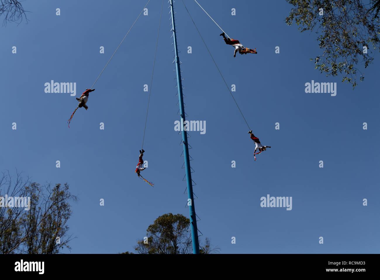 Voladores de Papantla - tradiitonal native acrobats. - Stock Image