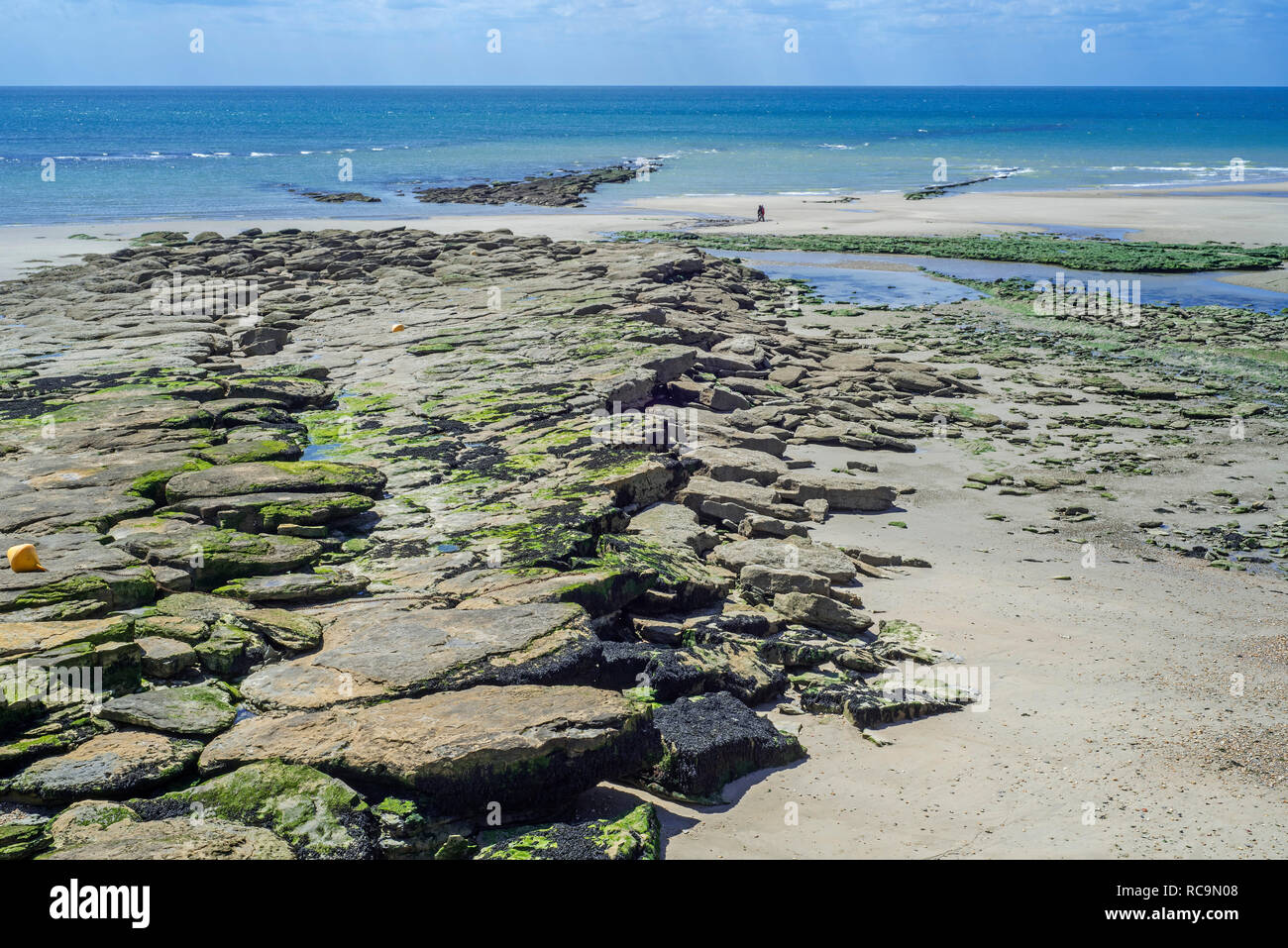 Jurassic rock layers exposed at low tide on the beach at Ambleteuse along rocky North Sea coast, Côte d'Opale / Opal Coast, France - Stock Image