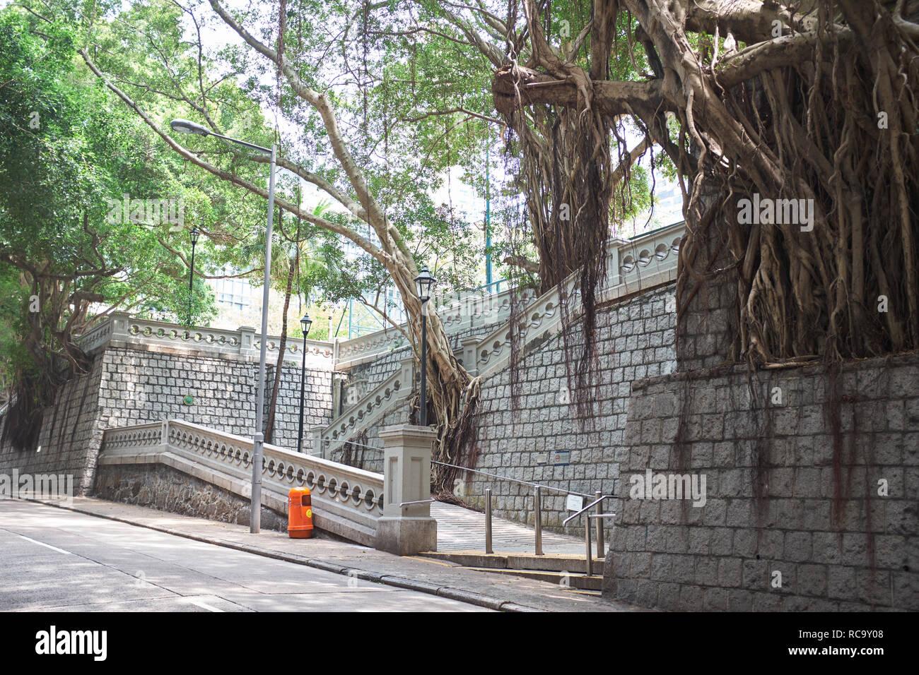 Hong Kong Park - Stock Image