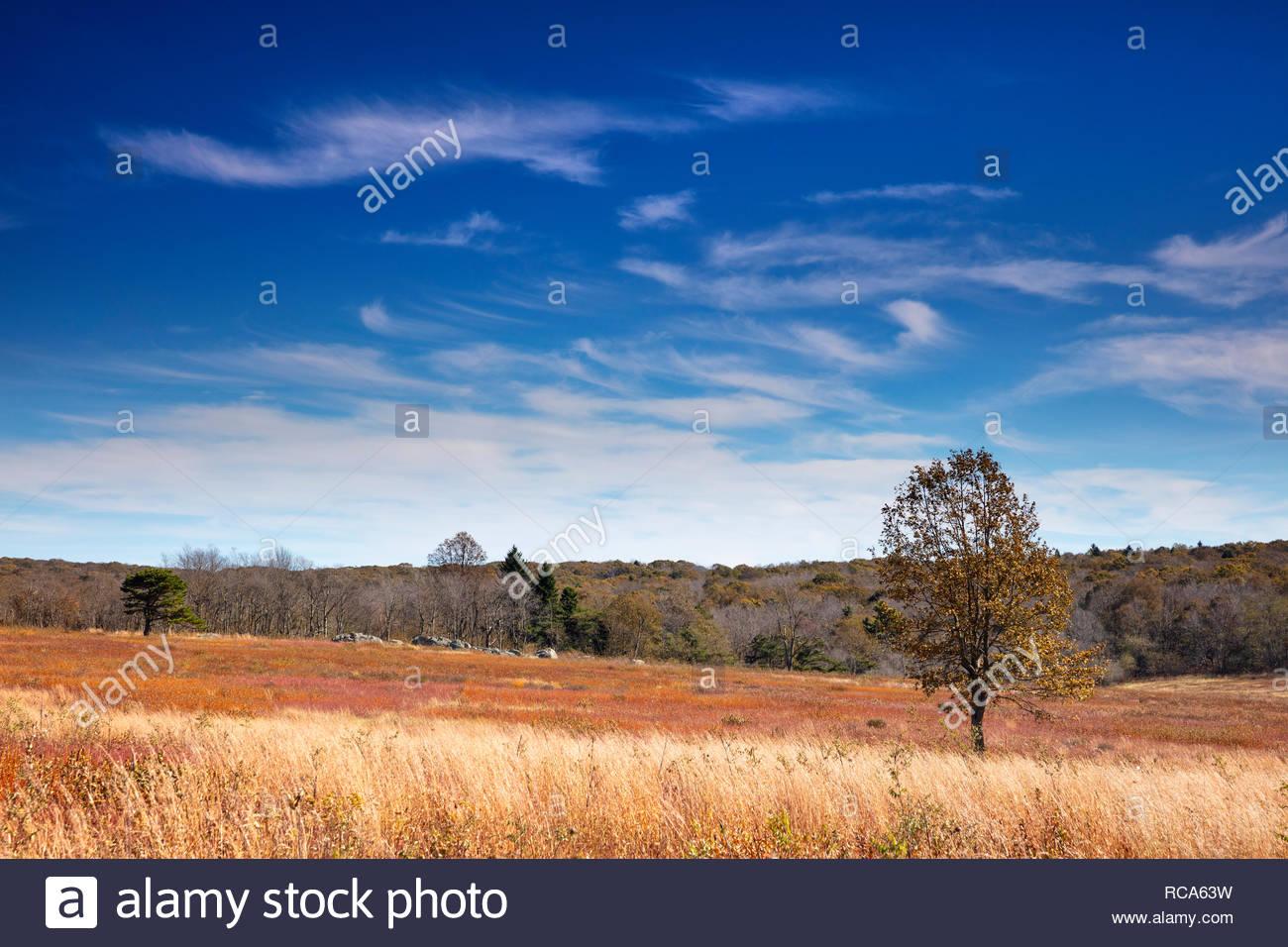 Big Meadows Shenandoah National Park Stock Photos & Big