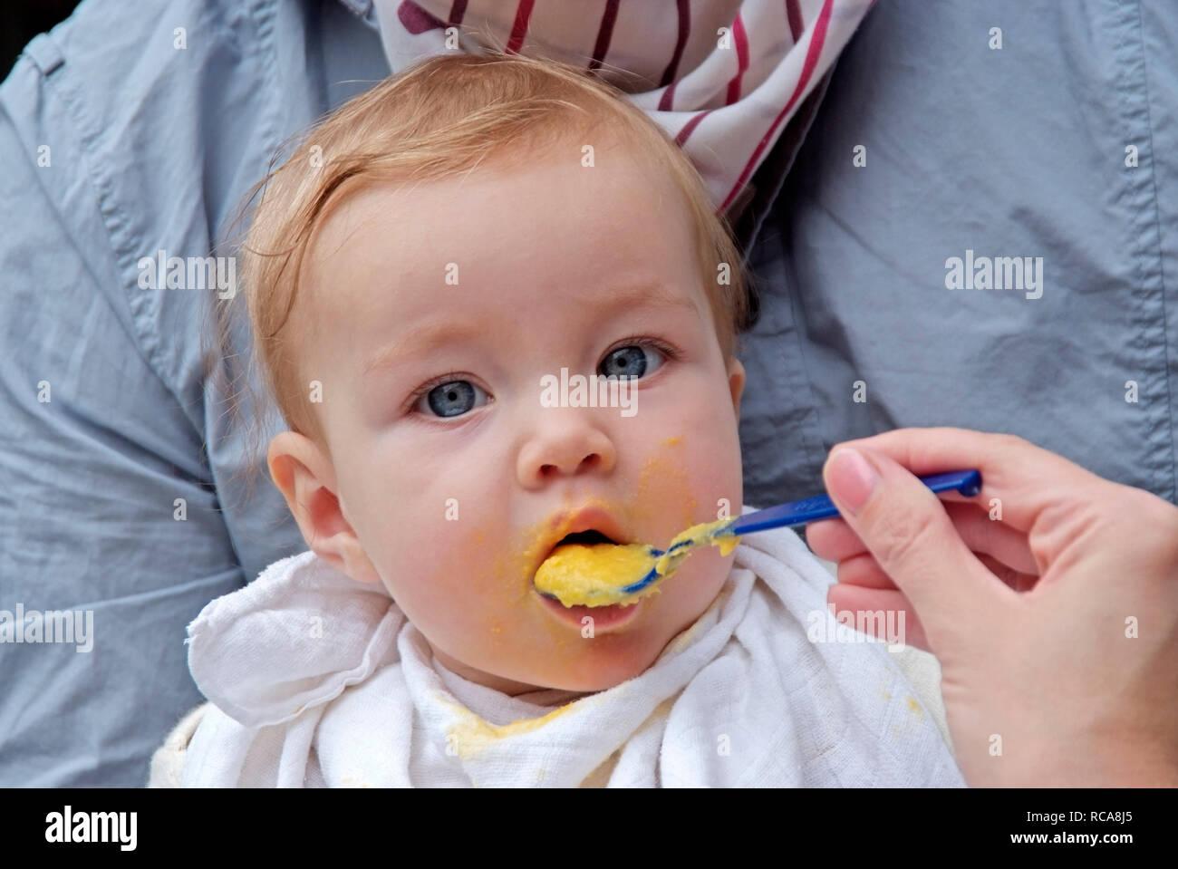 Eltern füttern ihr Baby mit Brei | parents feeding their baby wit pap - Stock Image