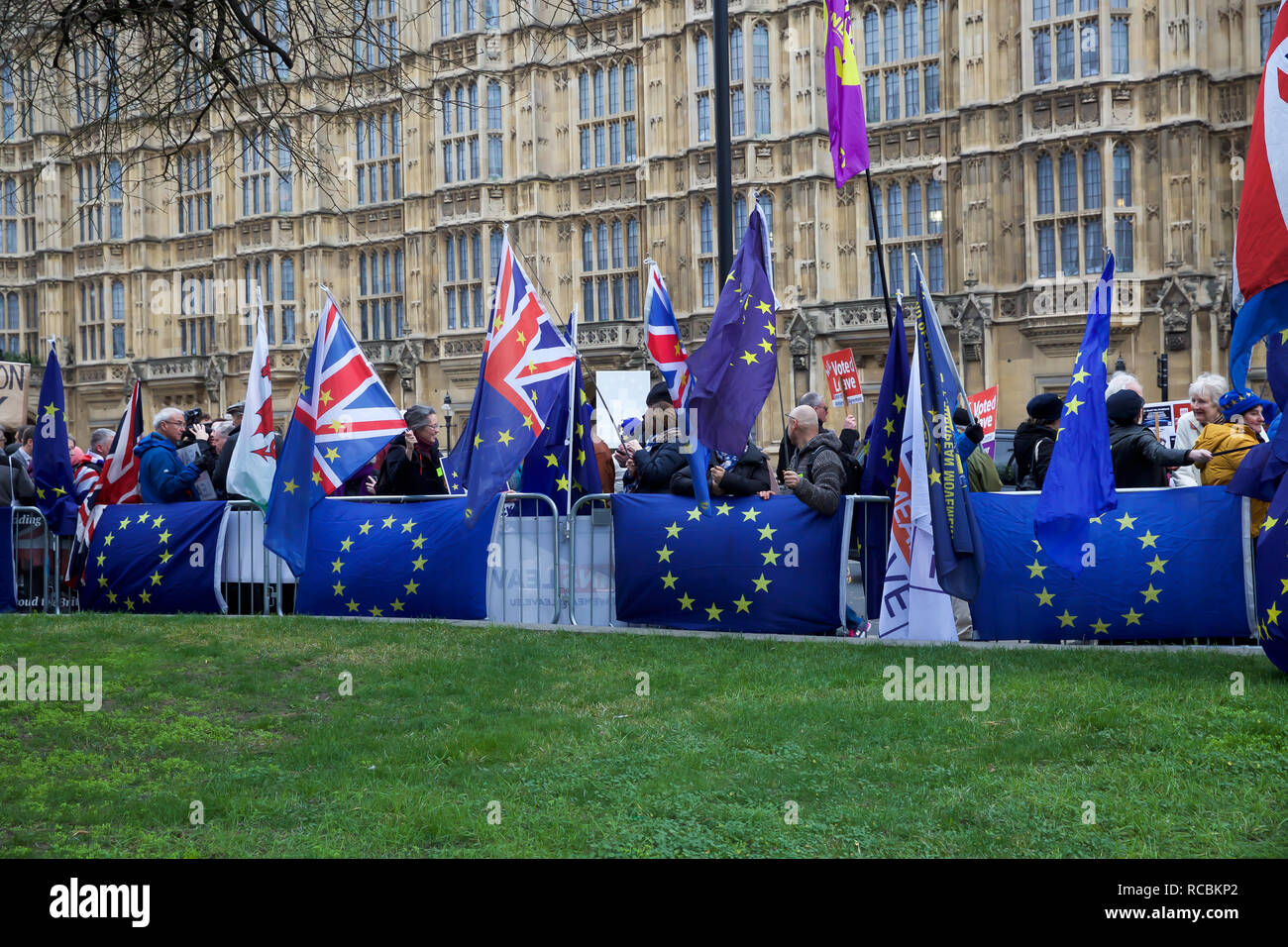 London, UK. 15th Jan, 2019. Protesters gather on College Green outside the Houses of Parliament on Brexit vote D-day. The vote takes place this evening despite a series of last-minute appeals to rebel Tory MPs to back her EU withdrawal agreement. A defeat is likely to be followed by Jeremy Corbyn calling a vote of no confidence in the government. Credit: Keith Larby/Alamy Live News - Stock Image