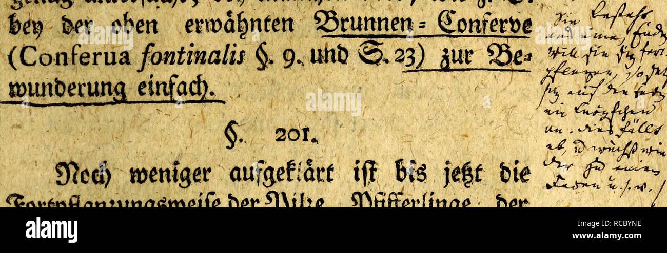 . D. Joh. Friedr. Blumenbach's, Prof. zu Gottingen ... Handbuch der Naturgeschichte : mit Kupfern. Natural history. fd)feben, obfcfyon bei) ben wentgfien nod) genau genug un£erfud)f; be$ manchen aber, wie j. ^ortgflanffln.qgtocife ber^itoe, $ jif[erUnge > bet 5i Uffeln :c. unb beg ©dbimmcfe beten qonse 9Rafurgefc^ic^te annocfc »ipl. rat§je(f)aftes bunfc (es |at Q3ep ben ttoüfommnern im eigentrid)en ateaud) ber©ef)dufe, worin fte eingefcfyfojfen ftnb, tfi: eben fo unenblicfy man« mcfyfafcig afe Der 2Mut(jeri if)re, unb in Stücf* ftcf>C auf i|re weitere Verkettung unb auf t§tr. §. 202. 3&g - Stock Image