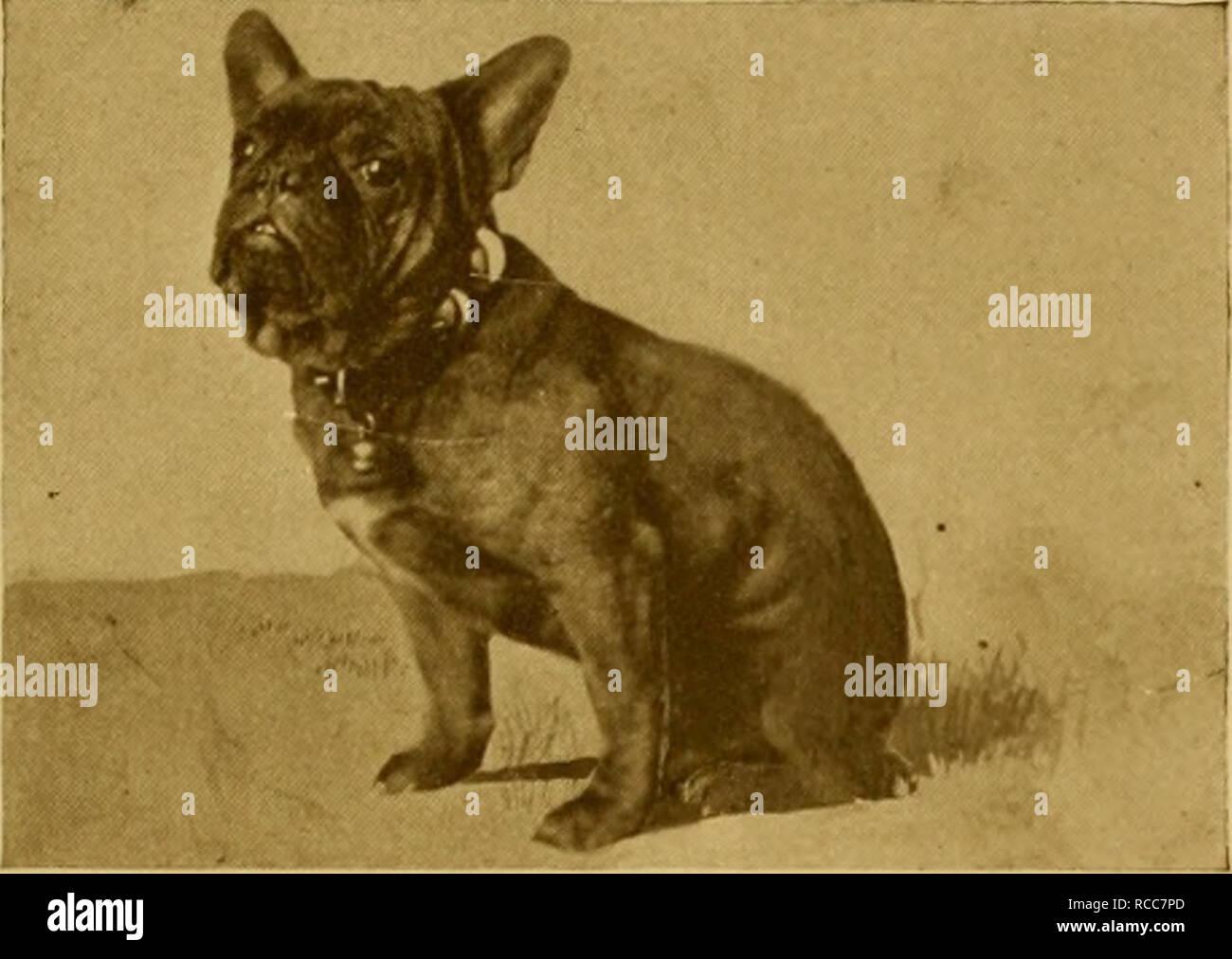 Shawmut Stock Photos & Shawmut Stock Images - Alamy