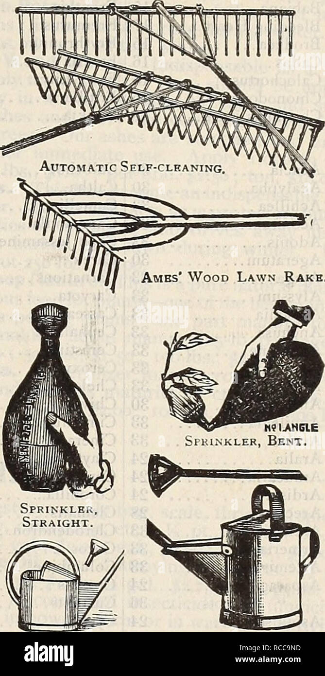 """. Dreer's 1900 autumn catalogue of bulbs, plants, seeds, etc. Bulbs (Plants) Catalogs; Flowers Seeds Catalogs; Gardening Equipment and supplies Catalogs; Nurseries (Horticulture) Catalogs; Fruit Seeds Catalogs. Jacks'jn s Lawn Kake. MMAimMl- """"mmssmm^ Hustler Lawn Rake. Lawn King Rakr. Hot-bed Sash. SiBVEb Plant Bed Cloth. MISCELLANEOUS TOOLS, Btc.—Con^i7med. Plant Bed Protecting' Cloth. A cheap substitute for glass. Light grade, 4 cts. per yard, per piece of about 70 yards, per yard, S-J cts. Medium grade, 8 cts. per yard, per piece of about 60 yards, per yard, 7 J cts. Heavy grade, lOJ c - Stock Image"""