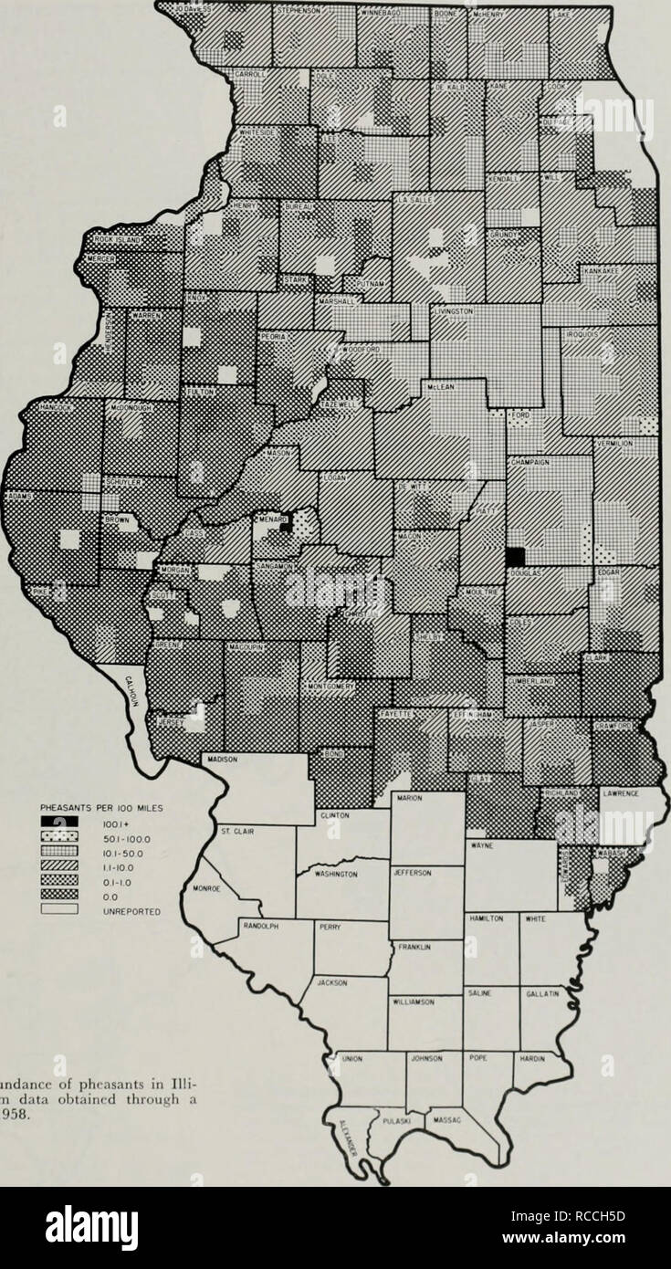 ". Distribution and abundance of pheasants in Illinois. Pheasants; Birds. Fig. 7. â Distribution and abundanrr of phrasants in Illi- nois as mapped by townships from data obtained throui^h a rural mail carrier census, August, 1958.. PHEASANTS PER 100 MILES BWB looi* L'l't'i'j 501-100 0 >â¢â "".;,: