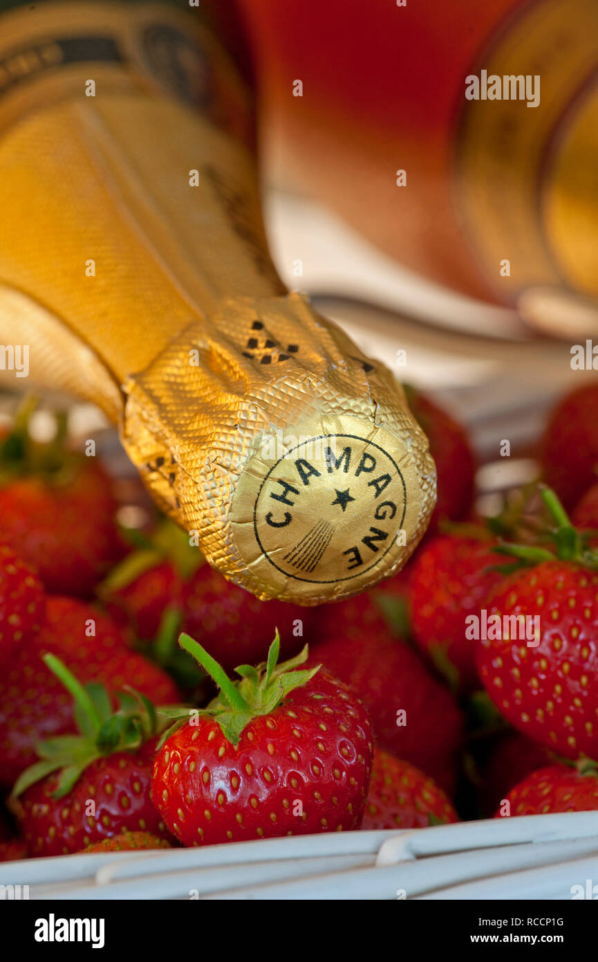 CHAMPAGNE STRAWBERRIES Rosé Champagne bottles in wine cabinet with fresh strawberries in white presentation baskets at spring /summer sporting event - Stock Image