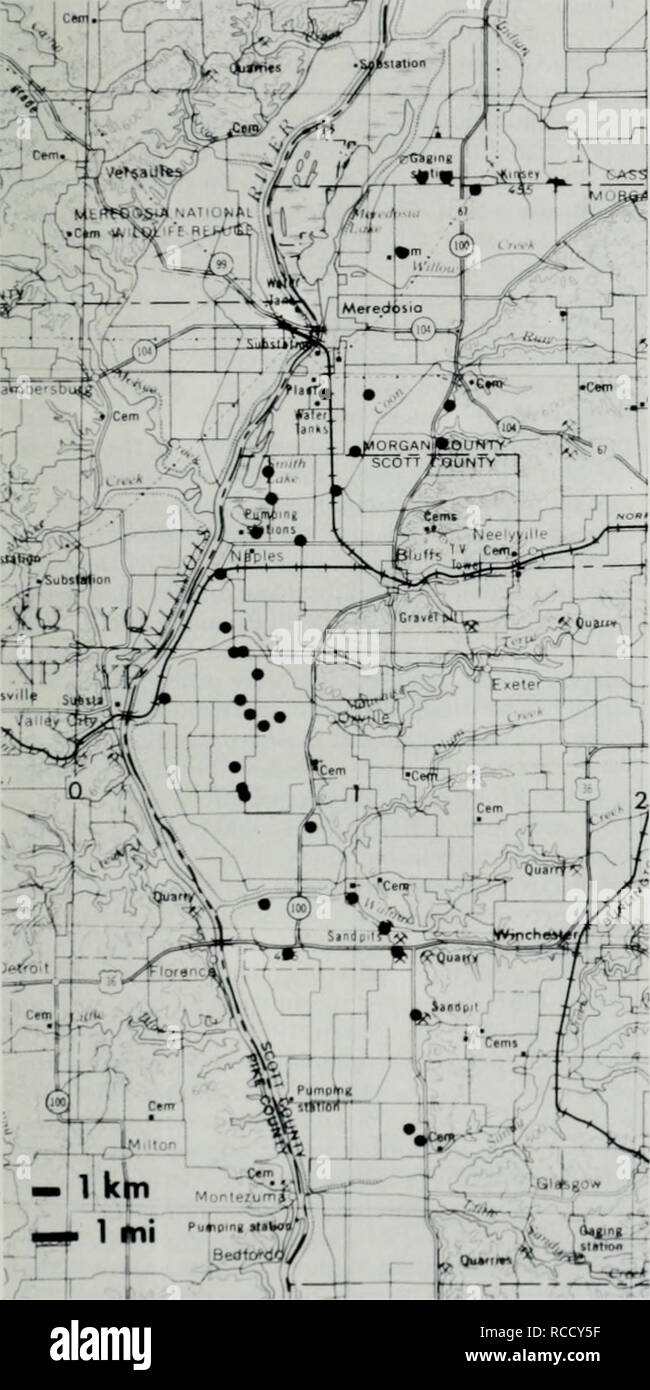 """. Distribution, habitat, and calling season of the Illinois chorus frog (Pseudacris streckeri illinoensis) along the lower Illinois River. Frogs. September 1988 Brown and Rose: Illinois Chorus Frog (Pseudacns strecken illmoemis) nated as a low-level sand terrace on Plate 7 ot Willnian 1973), we heard no P. streckert illinoensis. When our study was nearing completion, Moehn (1984) reported the first locality for Pseudacns strecken illinoensis from Scott County: """"2.8 km S intersection of US Hwy 54 and Hillview Blacktop."""" Loren D. Moehn. Fk.i'rk '.'t. New flistrihiitioiial records (larg Stock Photo"""