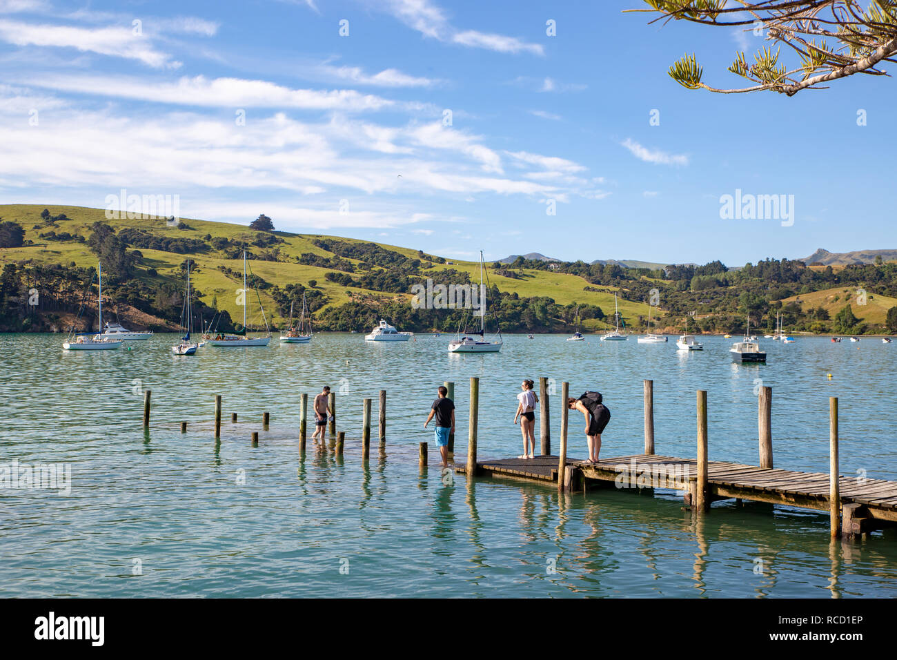Akaroa, New Zealand - January 6 2019: Swimmers cool off in the bay on a hot summer evening - Stock Image