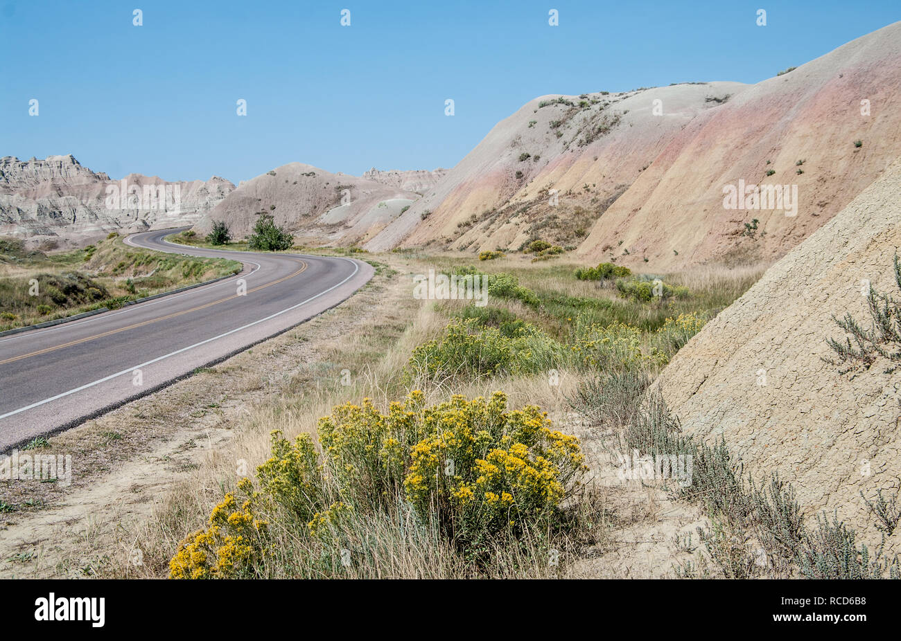 Scenic Drive in South Dakota:  A road in Badlands National Park curves among jagged  formations, blooming wildflowers and arid hills in rainbow colors - Stock Image