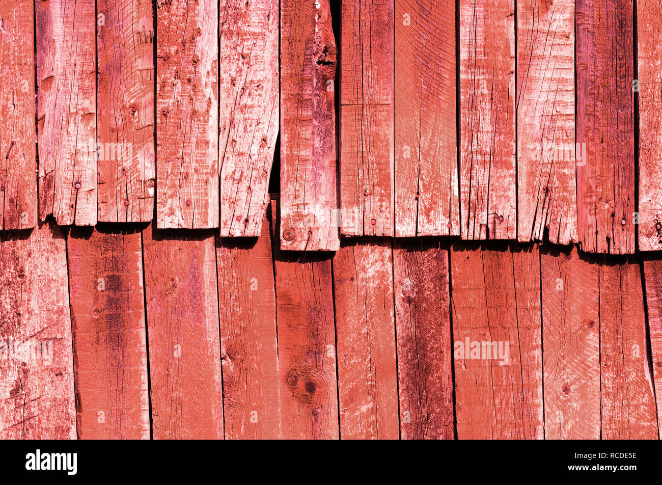 Old antique coral wooden groung the background,rustic wall or table - Stock Image