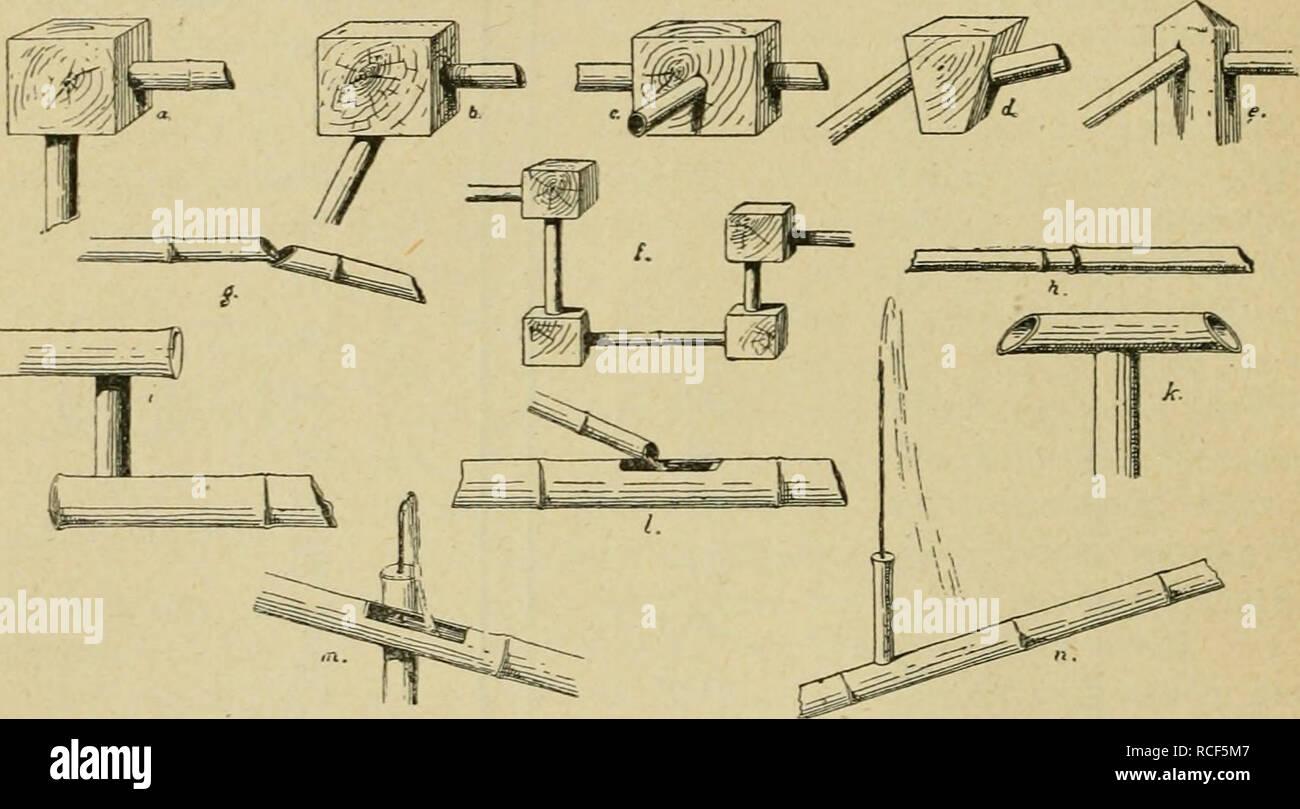 Die Verwendung Des Bambus In Japan Und Katalog Der Spörry