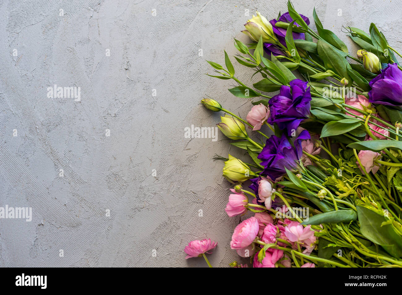 Floral flatlay. Upper view shot of pink ranunculus and purple lisianthus over concrete tabletop., Copy space. - Stock Image