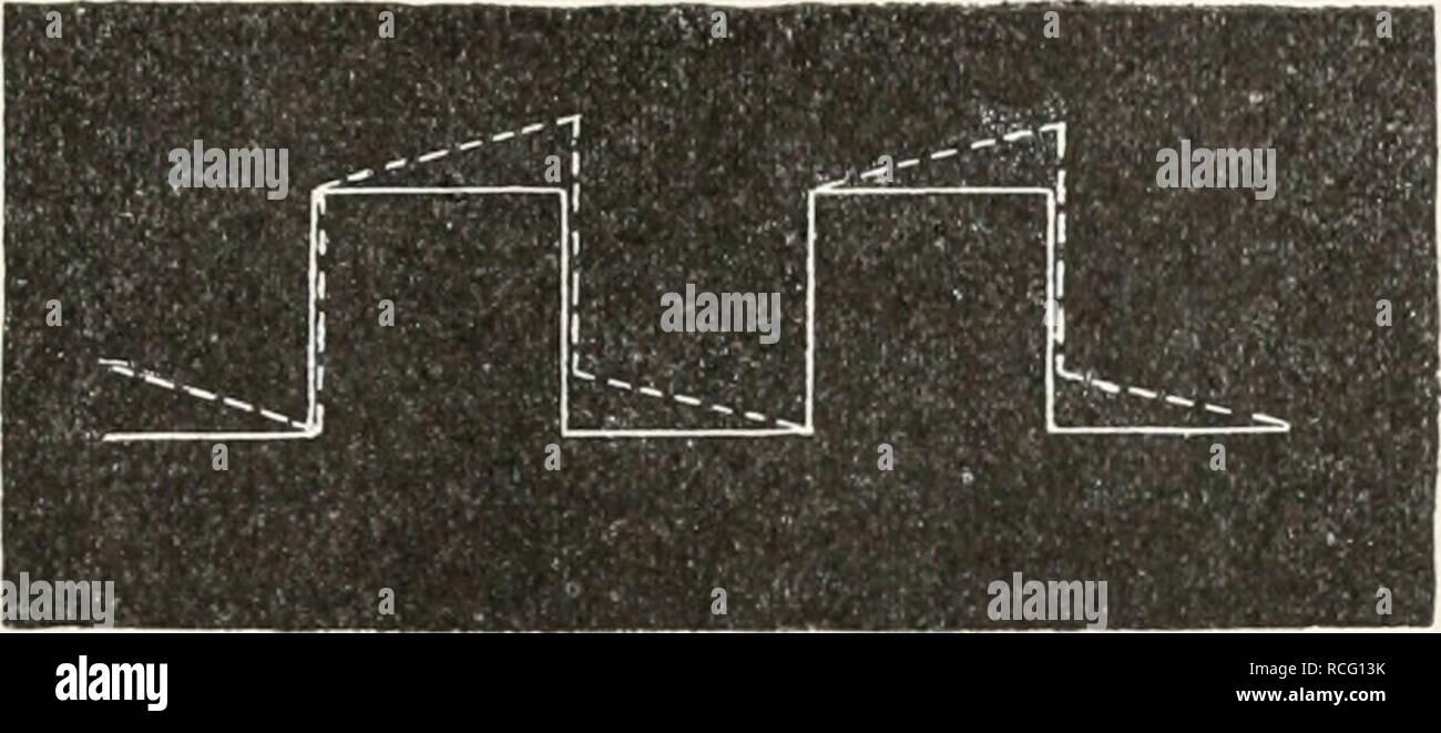 Wie wird radiometrische Datierung verwendet, um das absolute Alter der Fossilien zu bestimmen