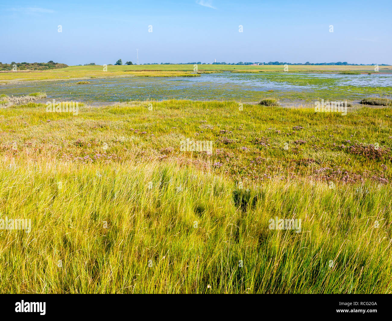 Panorama of salt marshes and tidal flats at low tide of Wadden Sea on West Frisian island Schiermonnikoog, Netherlands Stock Photo