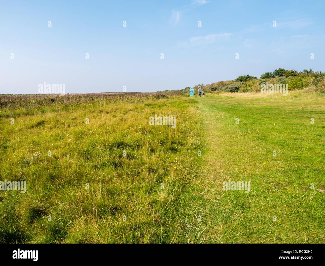 People walking on footpath of salt marshes on West Frisian island Schiermonnikoog, Friesland, Netherlands Stock Photo