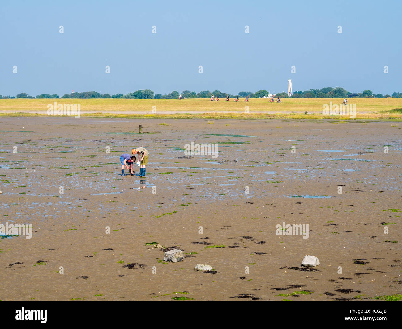 Children playing with mud on tidal flat at low tide and bicyclists on dike of West Frisian island Schiermonnikoog, Netherlands - Stock Image