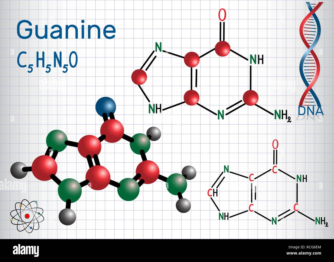 Guanine (G, Gua) - purine nucleobase, fundamental unit of the genetic code in DNA and RNA. Structural chemical formula and molecule model. Sheet of pa - Stock Image