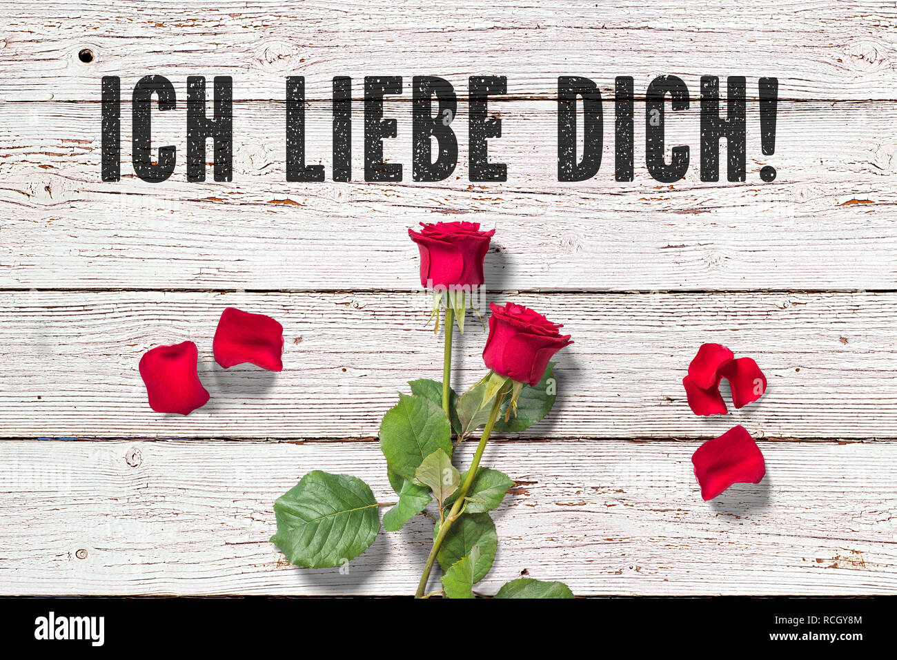 Roses For You (German Edition)