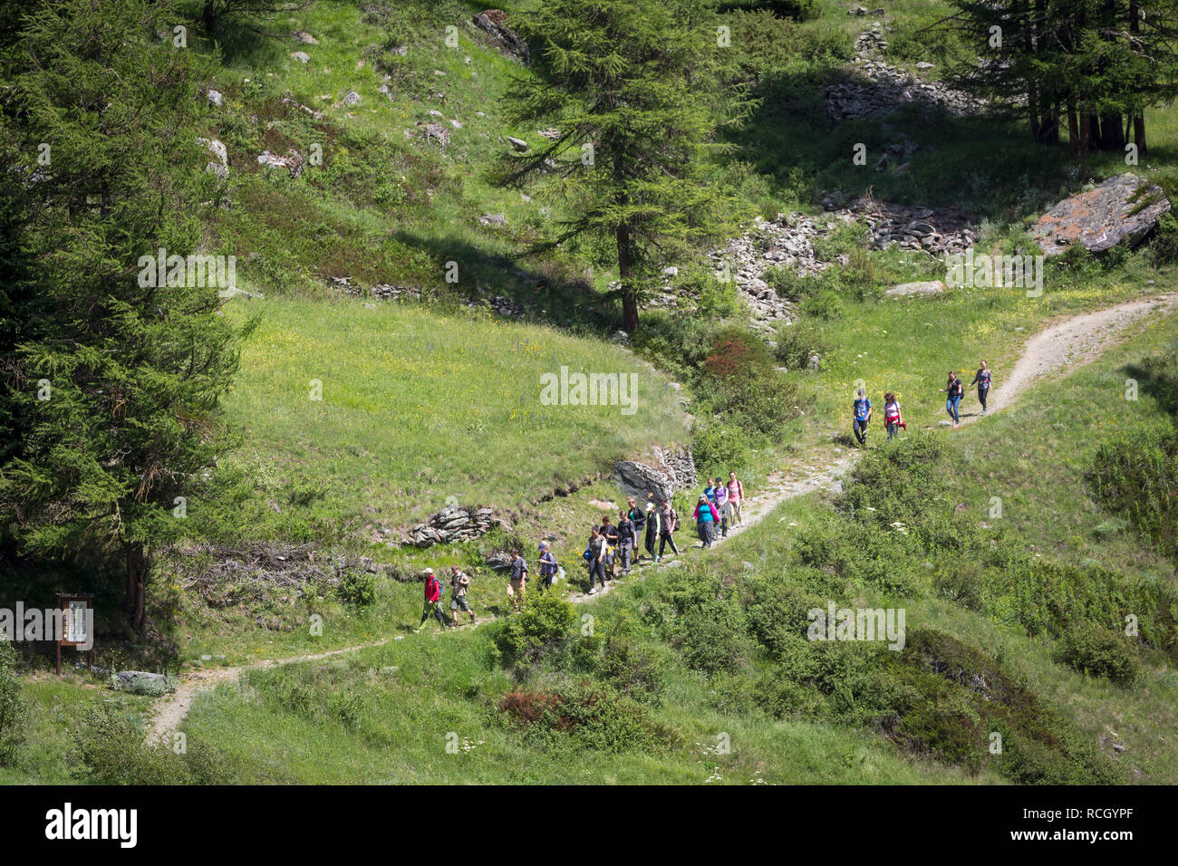 Hiking in Parco Nazionale del Gran Paradiso or Gran Paradiso National Park, Aosta Valley, Italy. - Stock Image