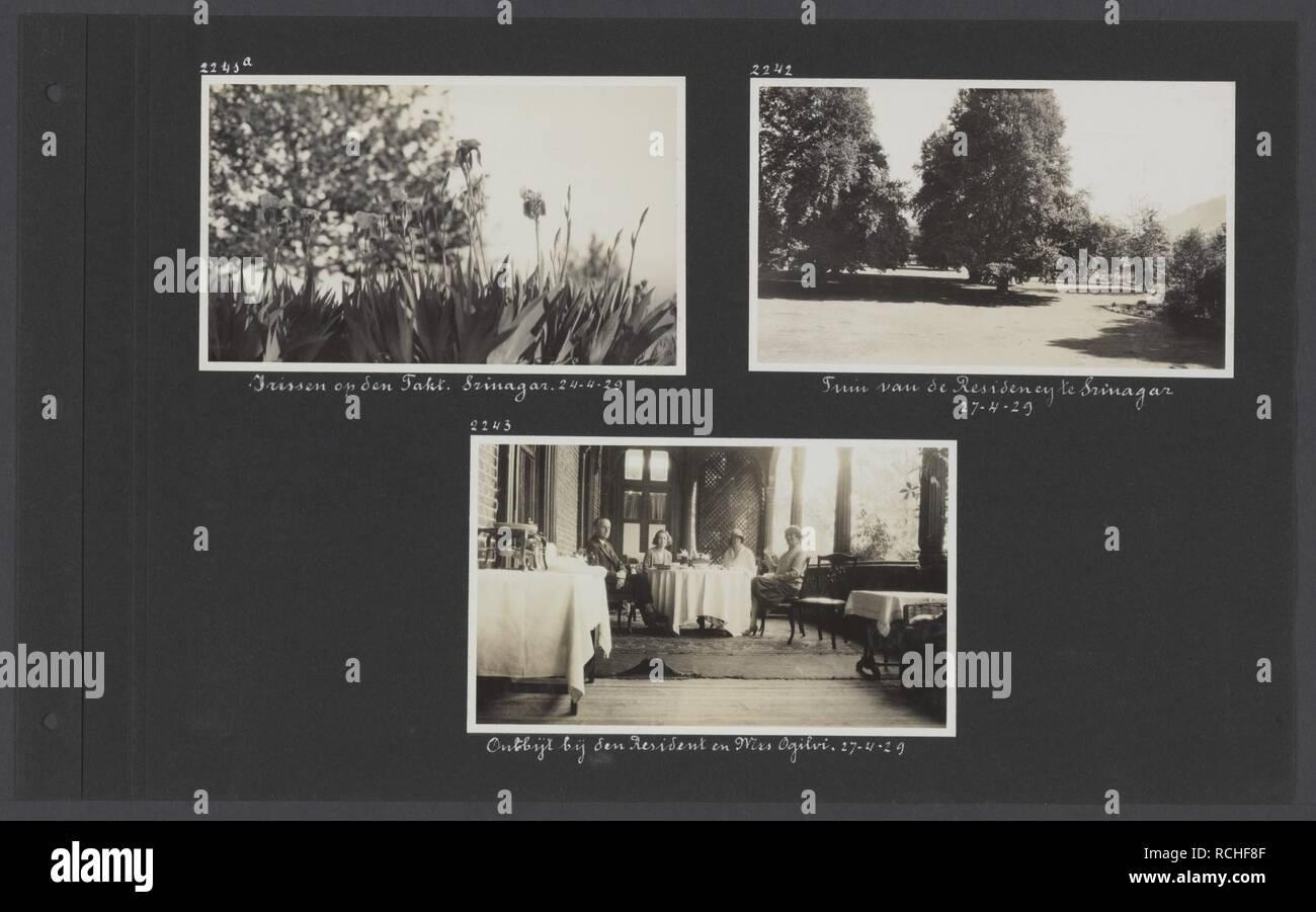 Albumblad met drie foto's. Linksboven irissen op de berg Takt bij Srinagar rec, Bestanddeelnr 32 43. - Stock Image