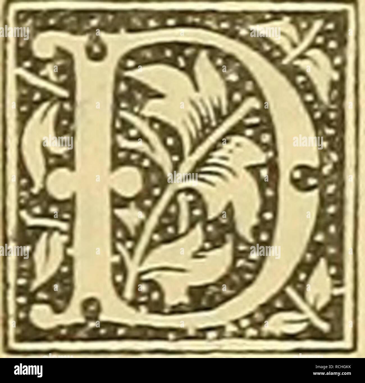 . Die Pflanzen im alten Aegypten : ihre Heimat, Geschichte, Kultur und ihre mannigfache Verwendung im sozialen Leben in Kultus, Sitten, Gebräuchen, Medizin, Kunst. Botany, Economic; Ethnobiology; Plant remains (Archaeology); Ethnobotany; Botany. — 323 - Tbeophrast, Plinius, Diodor, Strabon, Plu- tarch, Galen, Nikander, Sostratus und anderen alten Autoren war die Persea {neqaiov) sehr wohl bekannt. Nach D i 0 d 0 r 1) ist dieselbe erst unter Kambyses von äthio- pischen Anbauern nach Aegypten eingeführt worden. Für Aethiopien vermerkt sie auch Strabon und zwar unweit der östlichen Küste des Yorg - Stock Image