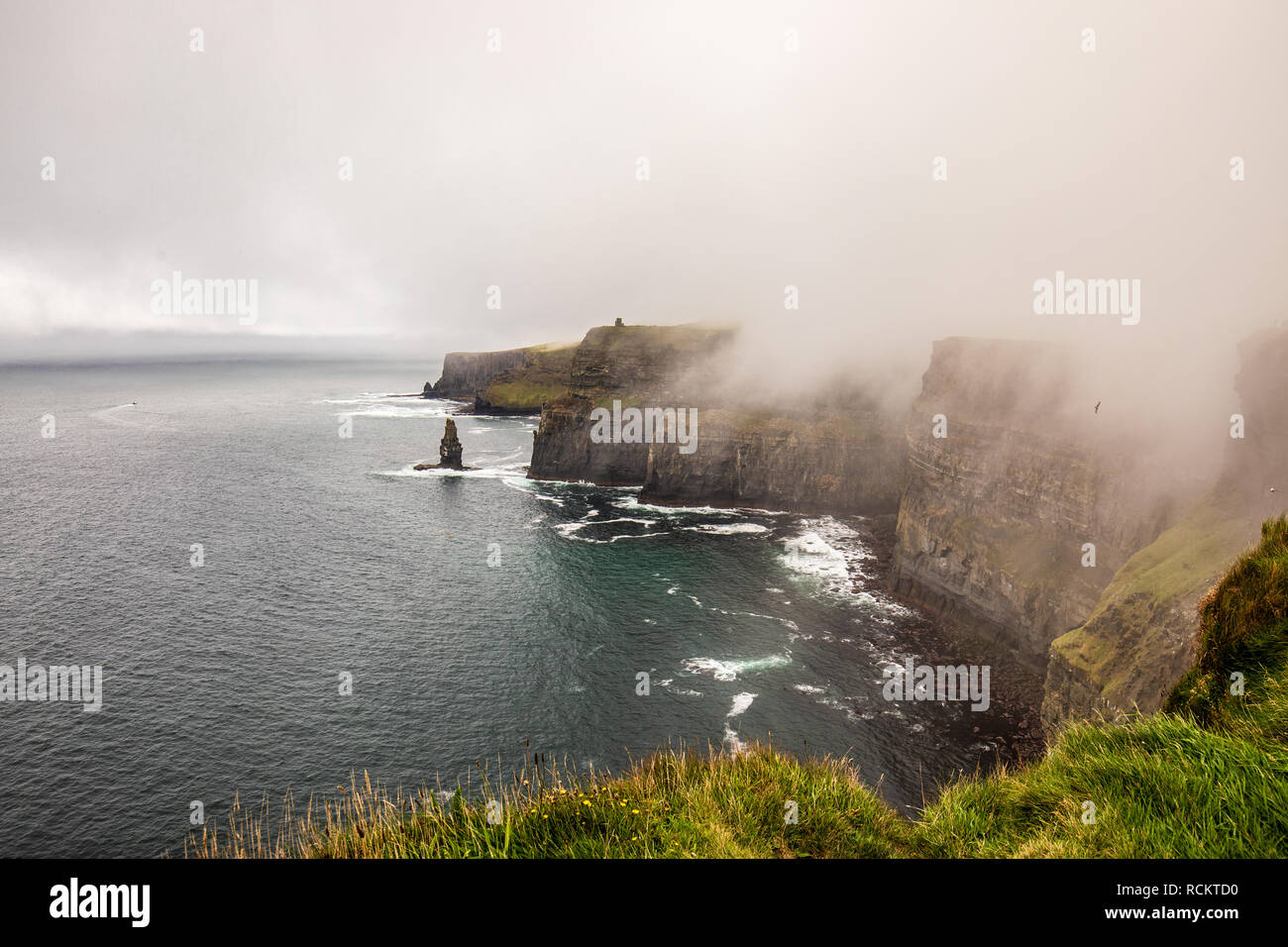 Foggy day at  the Cliffs of Moher, Ireland - Stock Image