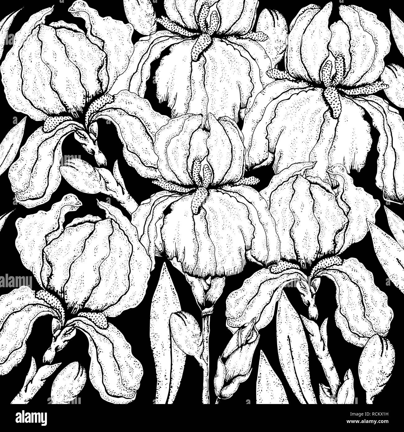 Doodle Floral Background In Vector With Doodles Black And White