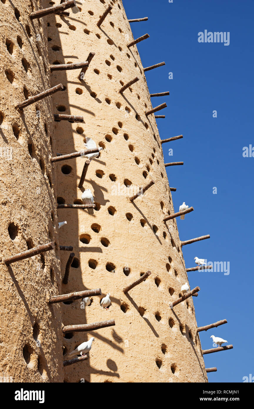 traditional dovecote in Doha Qatar with white doves - Stock Image