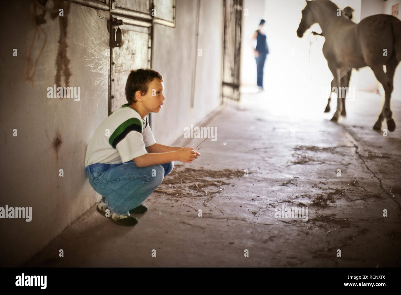 Boy crouched in a horse stable. - Stock Image