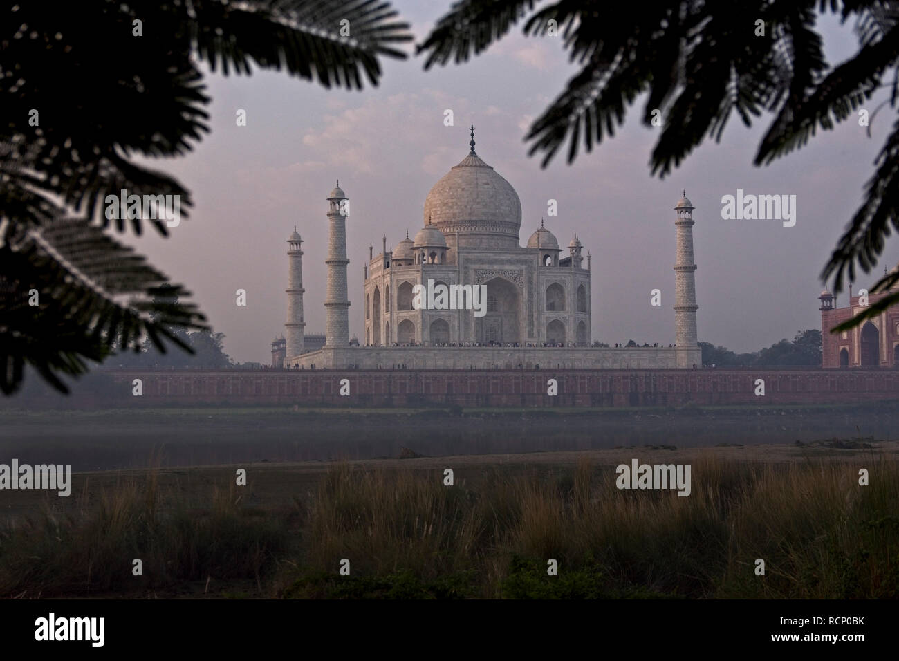 Taj Mahal  early morning view Stock Photo