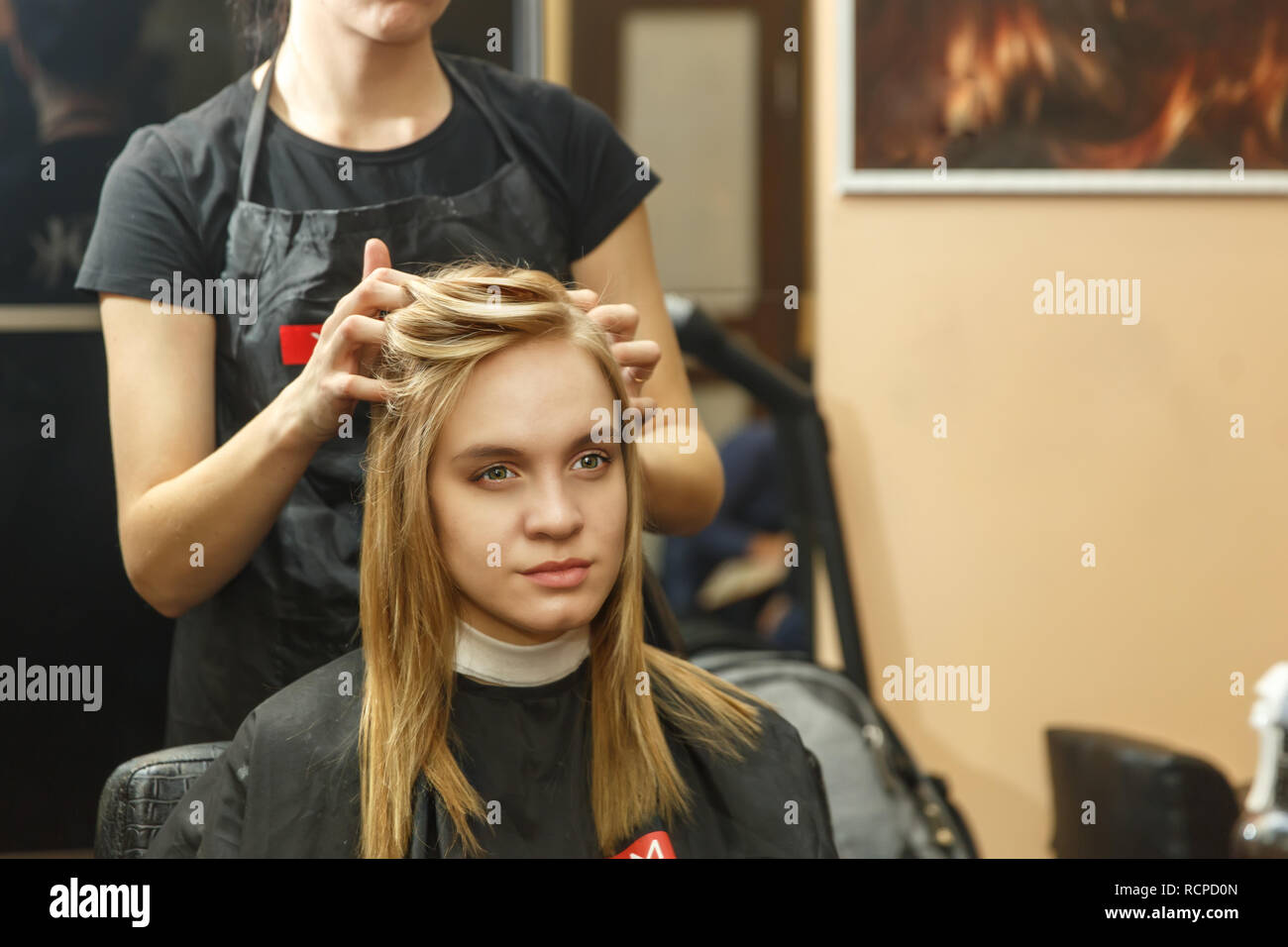 Professional hairdresser dyeing hair of her client in salon. Haircutter dry hair with hairdrier. Selective focus. - Stock Image