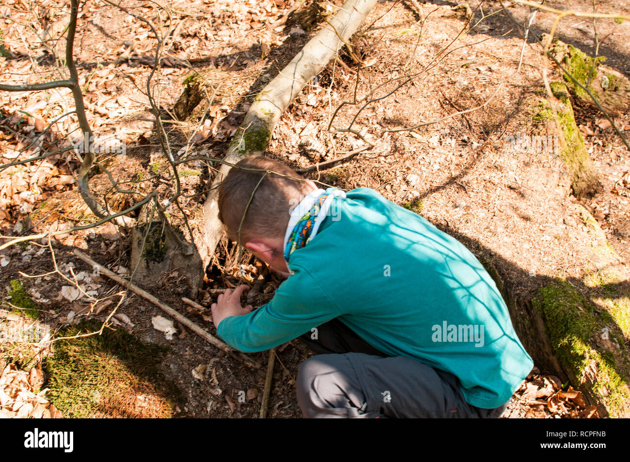 boy looking for a geocache in a crevice in the rock - Stock Image