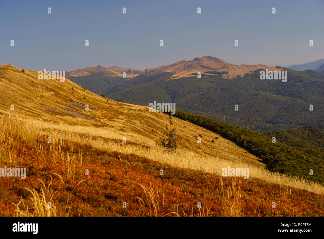 Amazing autumn colors in the Bieszczady Mountains. Poland - Stock Image