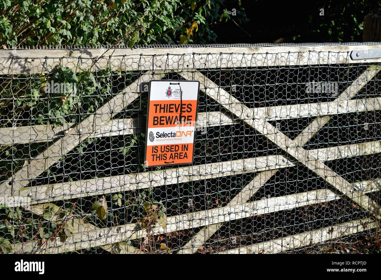 Sign on a five bar gate in the countryside warning 'Thieves Beware' forensic marking in use in the area, Surrey Hills England UK - Stock Image