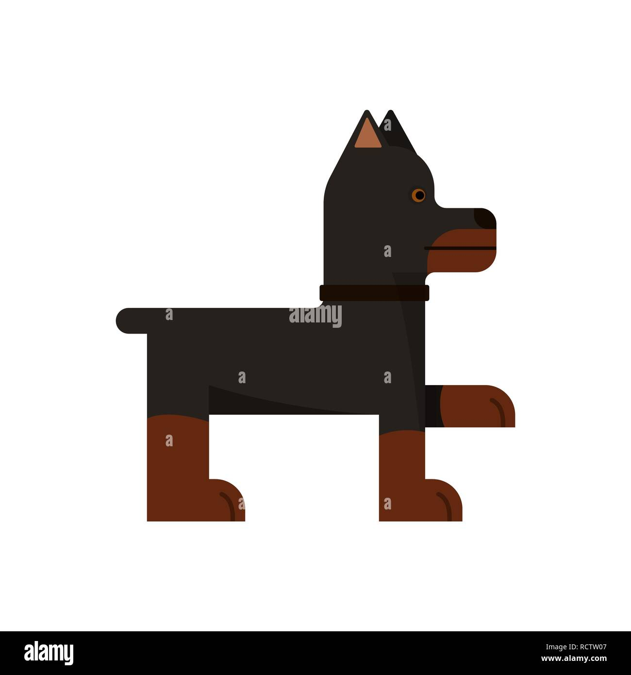 Doberman stand. Purebred dog gives a paw. Vector illustration. Flat icon. - Stock Image