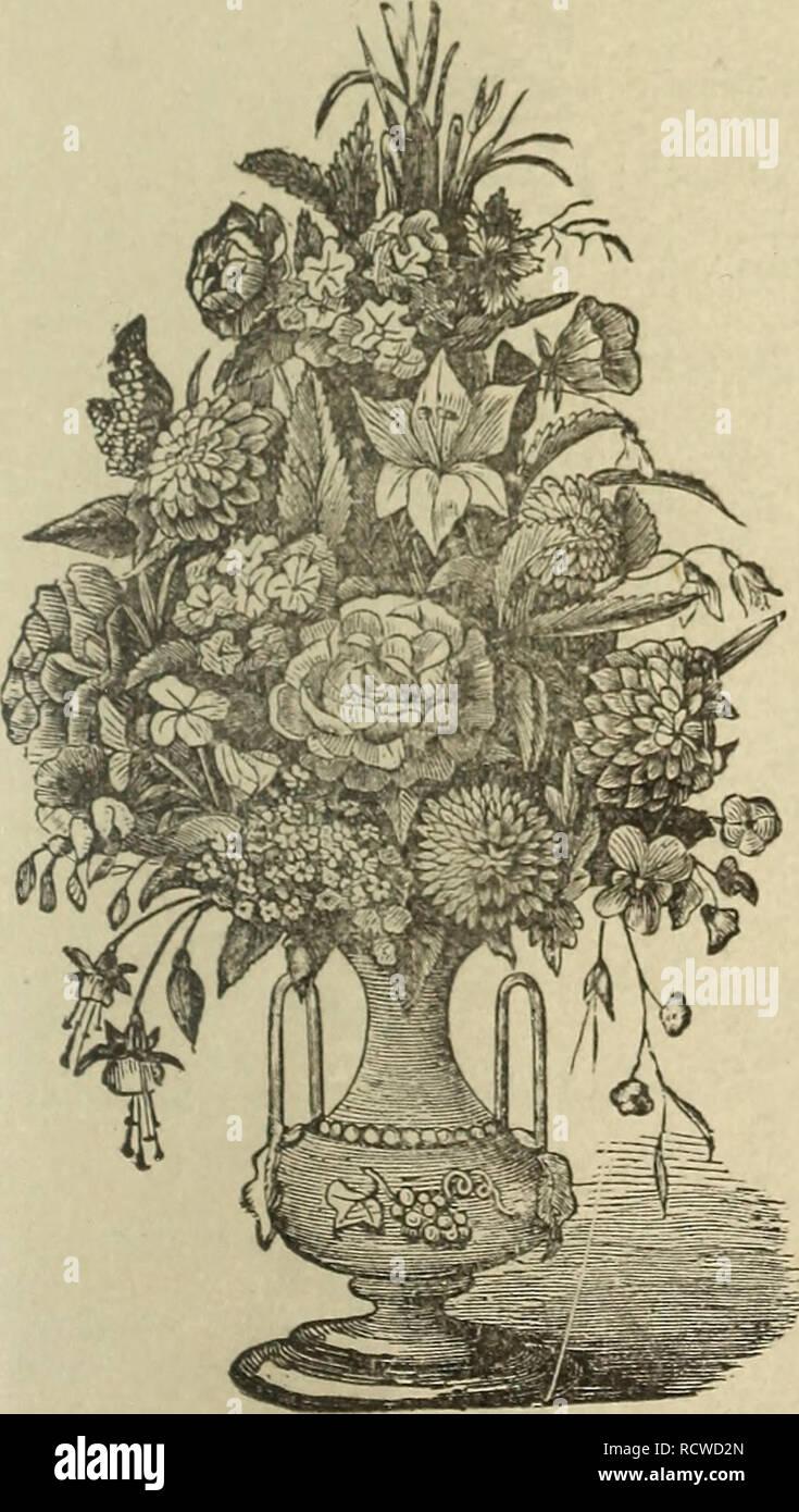Plantes Pour Talus Sec talus stock photos & talus stock images - page 8 - alamy